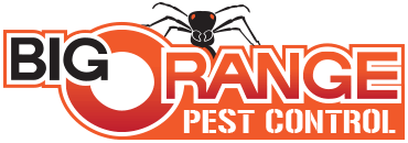 Big Orange Pest Control's Logo